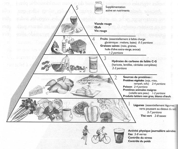 Pyramide alimentaire de Ray et Terry