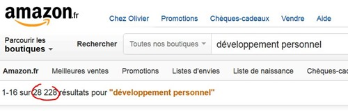 Développement Personnel Amazon